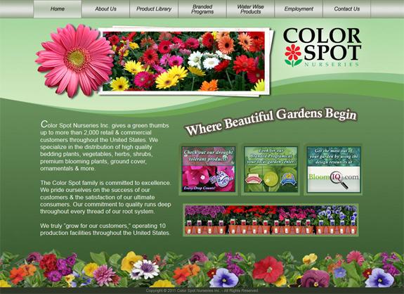 colorspot.com screenshot